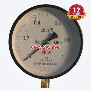 Đồng hồ đo áp P10-D150 (Đài Loan)