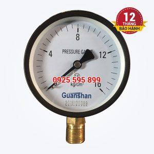 Đồng hồ đo áp P16-D100 (Đài Loan)